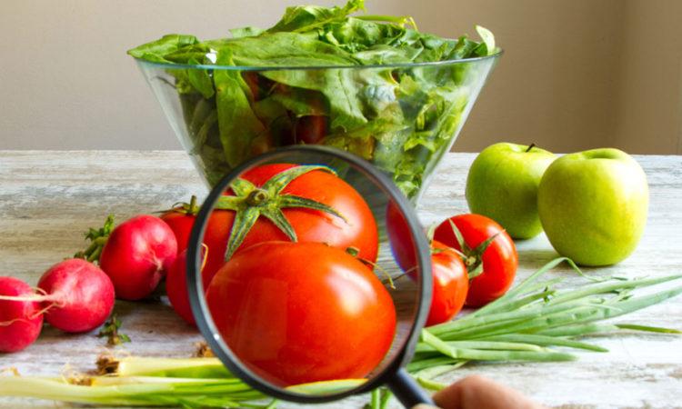 La inocuidad de los alimentos es responsabilidad de todos - Ser ...