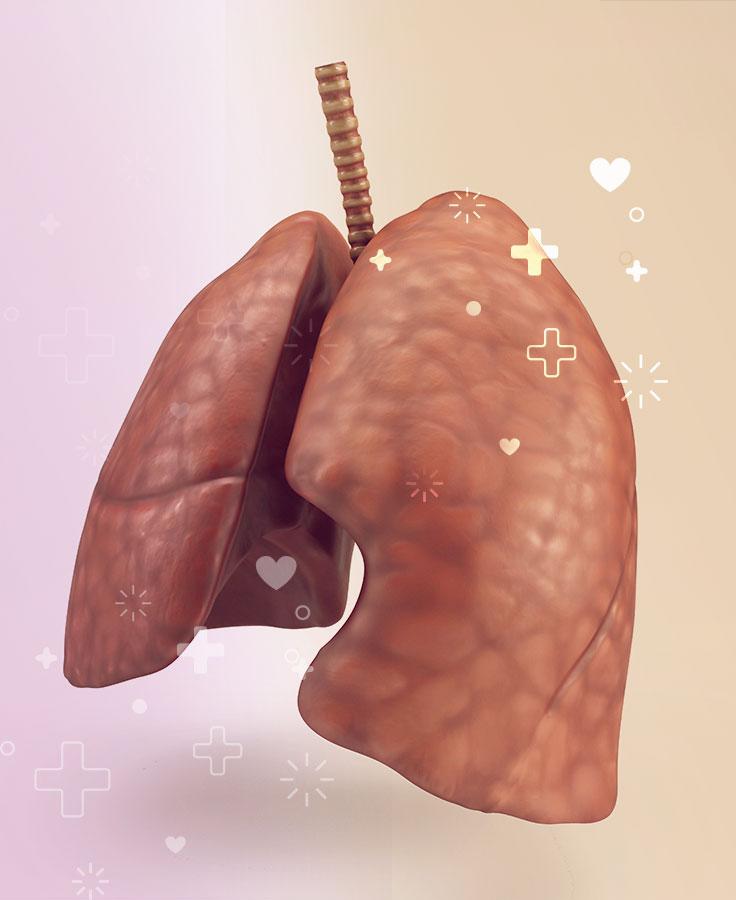 la tuberculosis afecta principalmente los pulmones