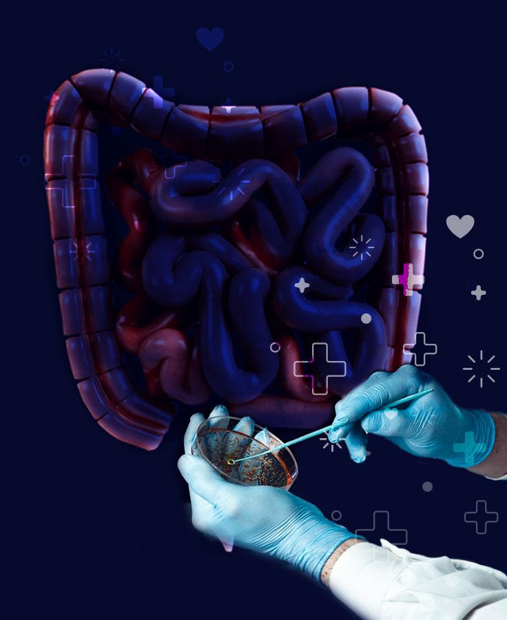 Las esporas de la bacteria se alojan en el tracto gastrointestinal